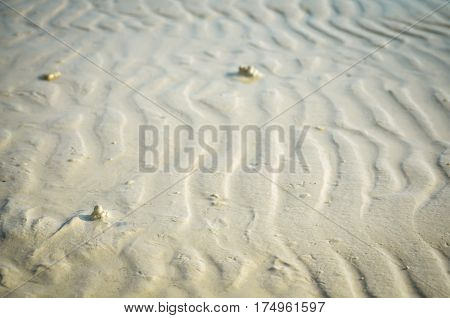 wave ripple structures at the sandy beach
