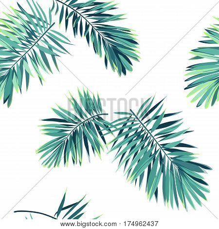 Tropical pattern with exotic plants. Seamless tropical pattern with green phoenix palm leaves. Vector illustration.