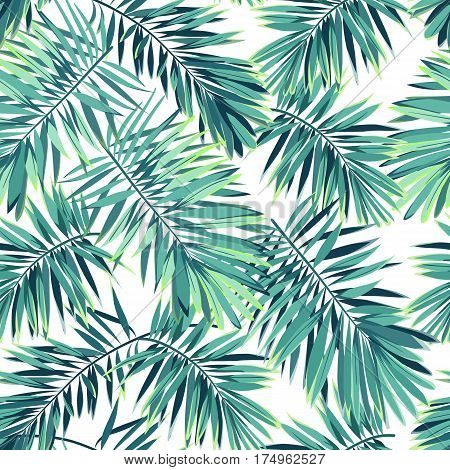 Tropical pattern with exotic plants.Seamless tropical pattern with green phoenix palm leaves. Vector illustration.