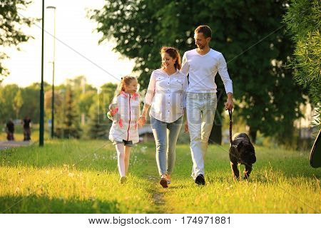 little girl with a pregnant mother, a happy father and a pet dog for a walk in the Park on a spring day.the photo has a space for your text