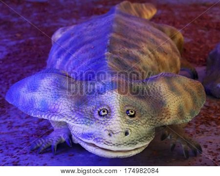 TUCSON, ARIZONA, FEBRUARY 20. The Tucson Expo Center on February 20, 2017, in Tucson, Arizona. An Extinct Genus of Giant Amphibian Named Diplocaulus at T-Rex Planet at the Tucson Expo Center in Tucson, Arizona.