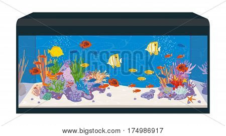 Marine reef saltwater aquarium with fish and corals