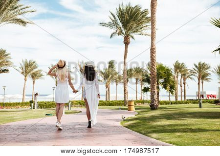 Back view of two carefree young women walking and holding hands on summer resort