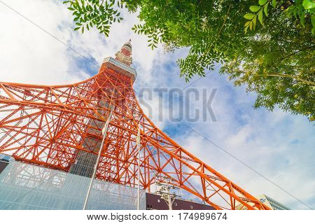 Tokyo Tower On Sunny Day Blue Sky With Green Tree