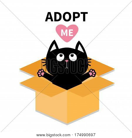 Adopt me. Dont buy. Cat inside opened cardboard package box. Ready for a hugging. Kitten looking up to red heart. Pet adoption. Flat design. Help animal concept. White background. Isolated. Vector