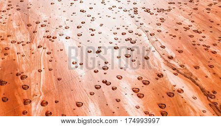 Water Beads Up On Beautiful Freshly Sealed Cedar Wood 3D Illustration