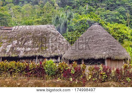 Indigenous Houses At Amazonia Ecuador