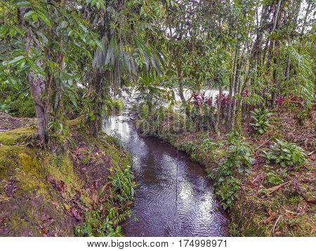 River At Amazonia At Puyo, Ecuador