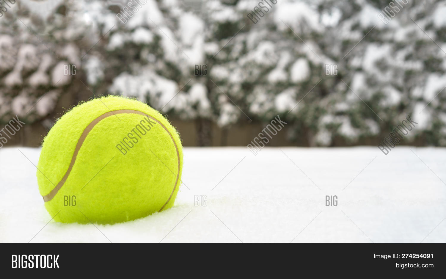 Christmas Sports Background.Tennis Christmas Ball Image Photo Free Trial Bigstock