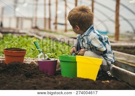 Planet Protection. Planet Protection By Growing Flowers. Small Boy Fight For Planet Protection. Plan