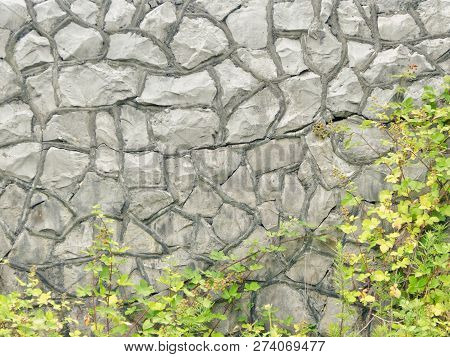Backgrounds And Textures Concept. Stone Wall And Winding Green Bush.