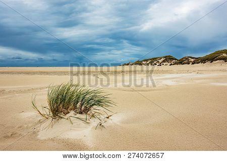 Dunes On The North Sea Island Amrum, Germany.