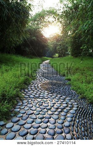 peddle path
