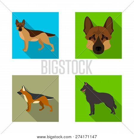 Vector Design Of  And Sheepdog Sign. Set Of  And German Stock Vector Illustration.