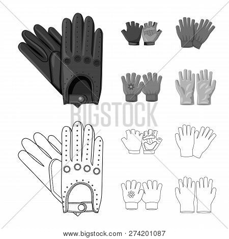 Vector Illustration Of Glove And Winter Icon. Set Of Glove And Equipment Stock Vector Illustration.