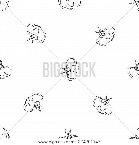 Healthy Spleen Icon. Outline Illustration Of Healthy Spleen Vector Icon For Web Design Isolated On W