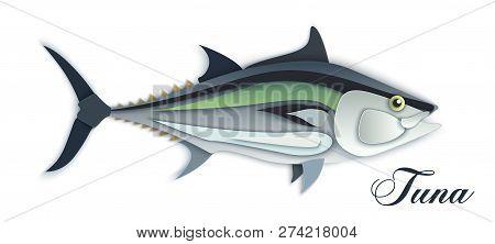 Tuna Fish Seafood, In Fashionable Paper Style Bulk Layers