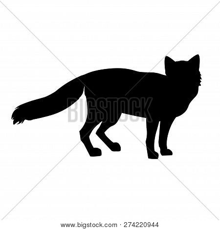 Silhouettes Of Standing Red Fox. Vector Illustration Isolated On White Background
