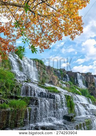 Mystical Waterfall With Foreground Is Autumn Leaves In The Da Lat Plateau, Vietnam. This Is Known As