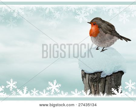 Create your own Christmas Card or background.  Add text or glitter, print off, fold, sign and ready to go.