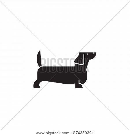 Dachshund Black Vector Concept Icon. Dachshund Flat Illustration, Sign