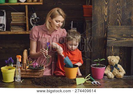 Florist Concept. Florist Woman And Little Child Potting Flower. Home Florist At Work. Florist Shop.