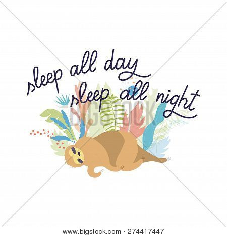 Vector Illustration Of Cute Character Sloth And Lettering. Isolated Cartoon Baby Climbing Sloths. Ha