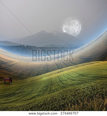 Peaceful Landscape with Mountain. Horse grazes at the field. 3D rendering