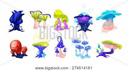 Collection Of Colorful Magical Fairytale Mushrooms Growing In Enchanted Forest. Set Of Exotic Natura