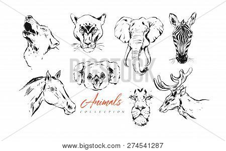 Hand Drawn Vector Abstract Artistic Ink Textured Graphic Sketch Drawing Illustrations Collection Set