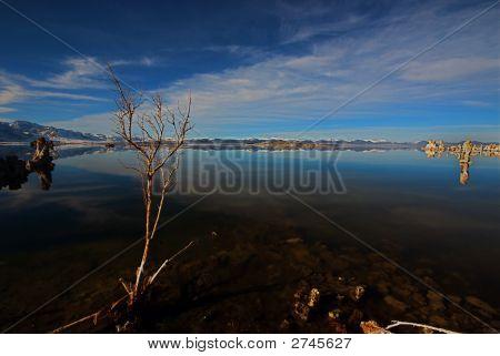 Winter Eastern Sierra N 2