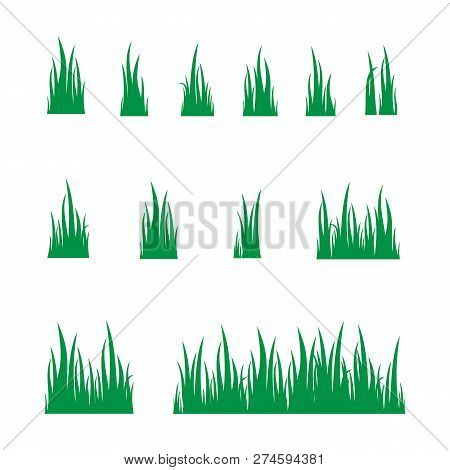 Grass Design Elements Set Isolated On White Background. Collection Green Grass, Grass Vector Image,