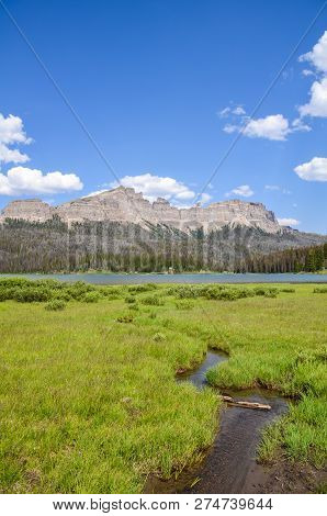 Small Creek Leading Into Brooks Lake In The Shoshone National Forest In Wyoming