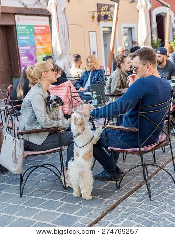 Szentendre, Hungary - April 08, 2018: Street Cafe, Family With Dogs Resting. Mans Hand Patting A Sma