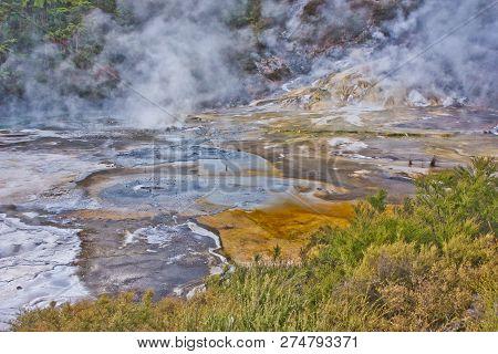 Detail Of Frying Pan Lake In Waimangu Geothermal Park, New Zealand