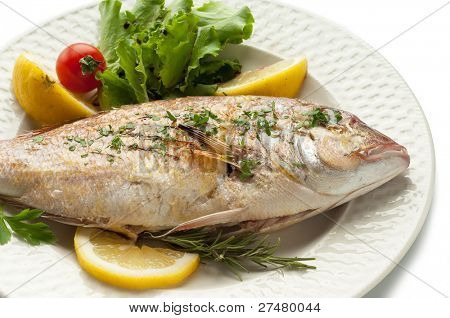 grilled red snapper poster