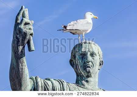 Statue Of Emperor Caesar Nervae August With Gull On The Head. Man Taking Selfie. Humor Concept