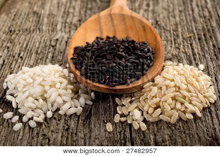 勺子在水稻品种