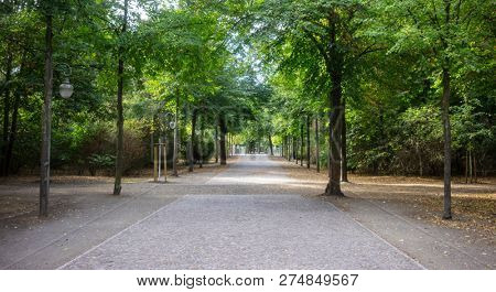Tiergarten park with lush flora in Berlin. Autumn with falling leaves and green trees background. Nature in Germany.