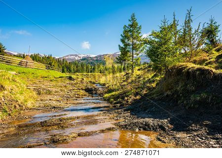 Small Brook In Mountains. Trees On The Hill Above The Stream. Haystack Behind The Wooden Fence. Moun