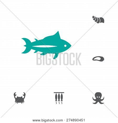 Set Of 6 Sea Icons Set. Collection Of Oyster, Conch, Crab And Other Elements.