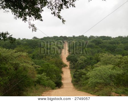 Sand Road In The African Bush