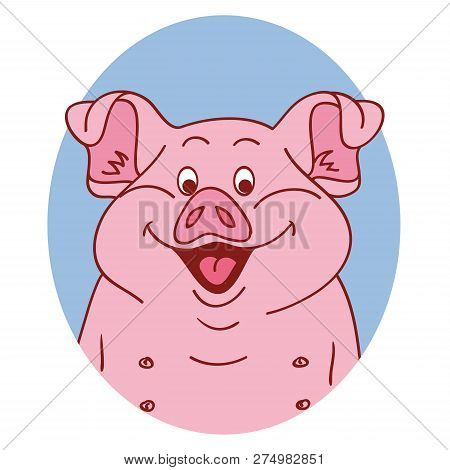 Pig Face. Pig Isolated. Pig Portrait On White Background, Happy Character Piggy. Cartoon Pig Looks O