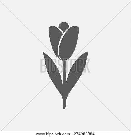 Tulip Icon In Shades Of Gray. Hand Drawn Style Vector Design Illustrations