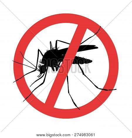 Mosquito. Symbol Parasite Warning Sign. Silhouettes.  Hand Drawn Style Vector Design Illustrations