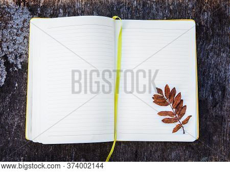 Opened Blank Notepad With A Leaf On The Grunge Background Closeup