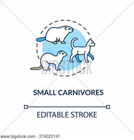 Small Carnivores Concept Icon. Wild And Domestic Animals. Food Chain Predators. Land Ecosystem Idea