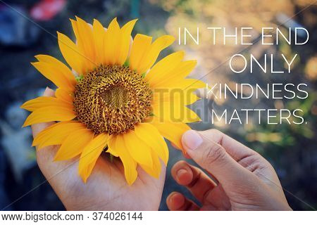 Inspirational Quote - In The End Only Kindness Matters. With Sunflower Blossom In Hands. Keep Being