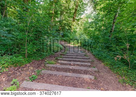 Stone Stairway On A Hill In The Middle Of The Forest Among Trees And Vegetation With Green Foliage,