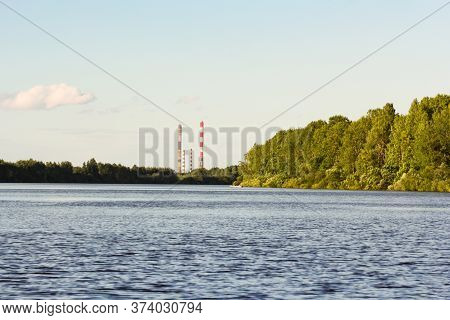 Tall Pipes On The Shore. Nature On The Banks Of The Volkhov River.